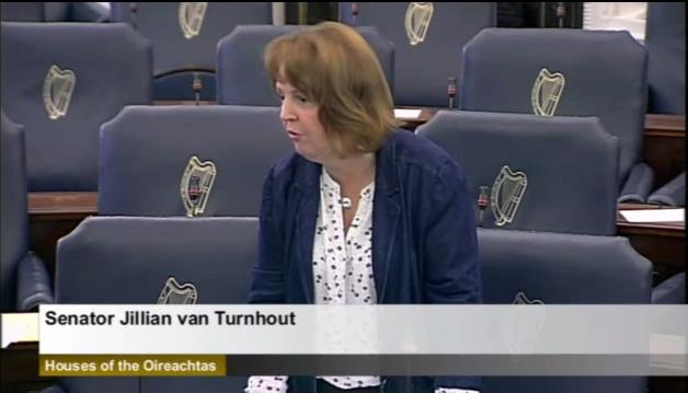 Senator Jillian van Turnhout: Child Protection: Motion.