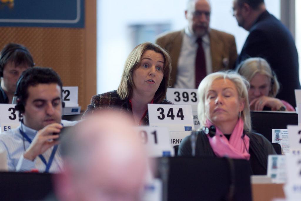 Jillian at Plenary Meeting of European Economic and Social Committee  (Vice-President)